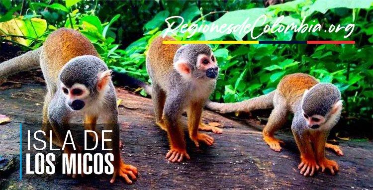 isla de los micos amazonas