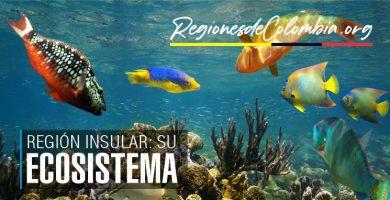 ecosistema de san andres y providencia